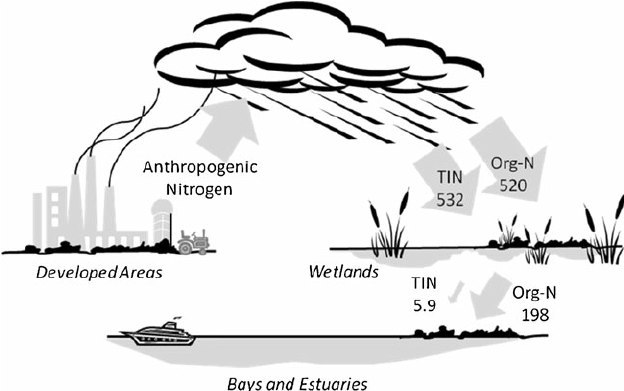 diagram showing the nitrogen cycle