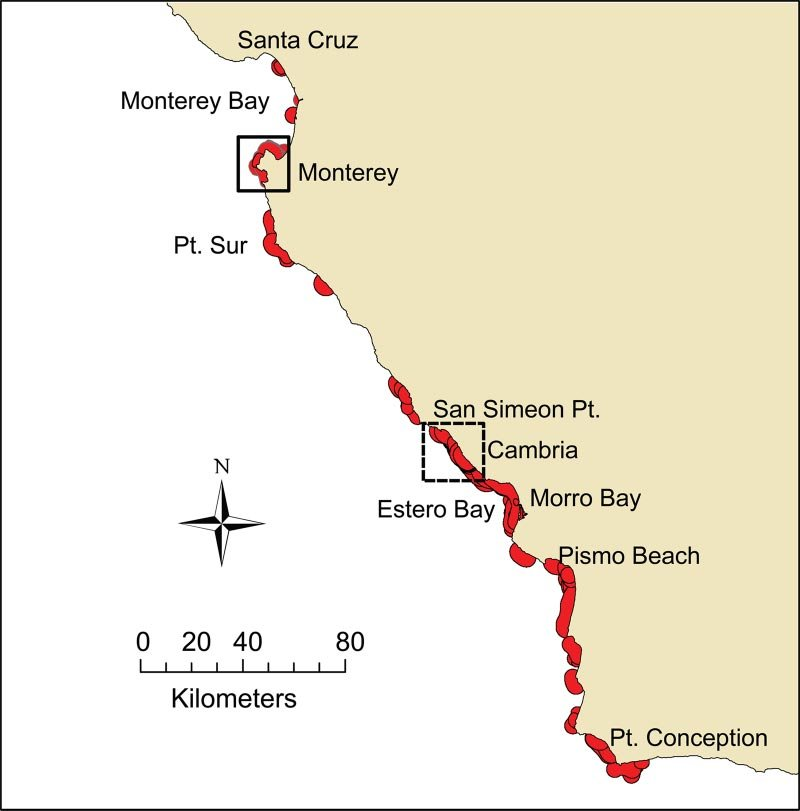 Map of the geographic distribution of sea otters in California - geographic preference definition