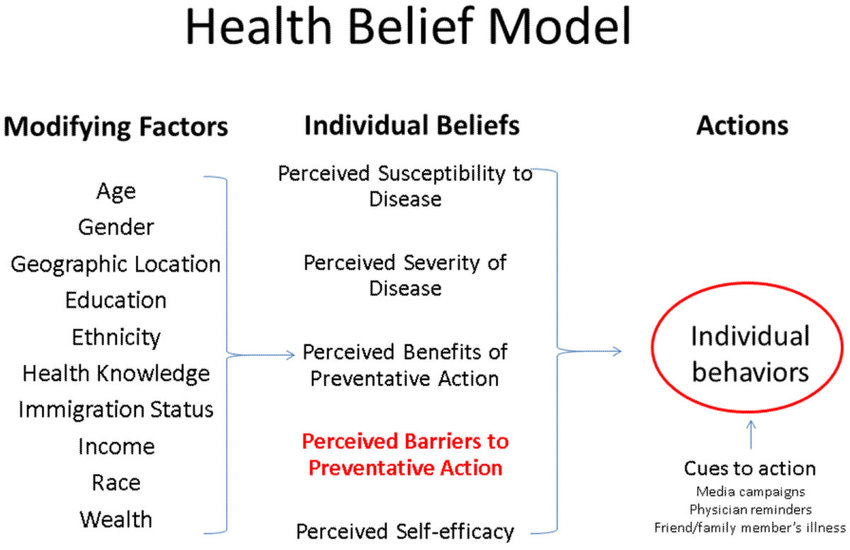 Health Belief Model Components and Linkages The major constructs of - health components