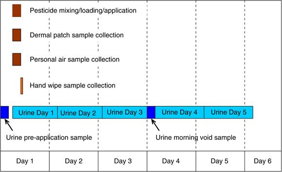Sample Timeline Circular Timeline Free Circular Timeline - sample personal timeline