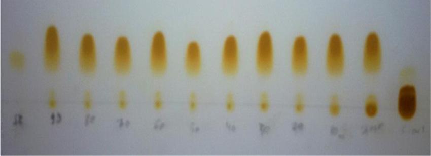 TLC profile of the transesterification product using 1 sodium