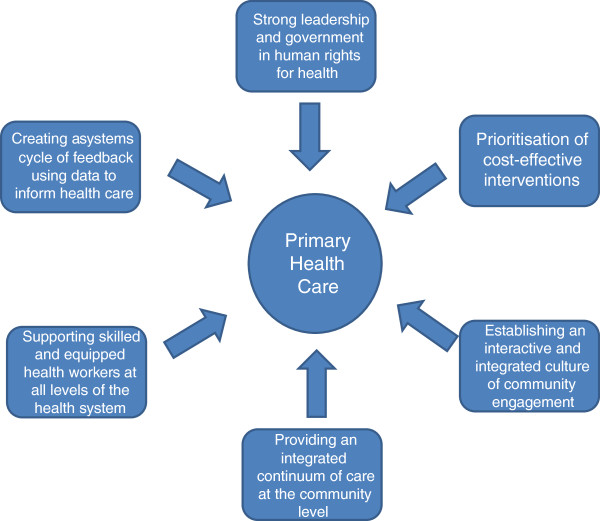 Core principles  components for effective implementation of primary - health components