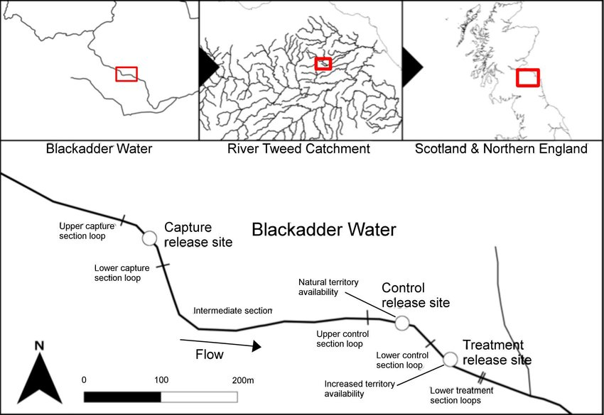 1 Map of the study river section White circles denote the three