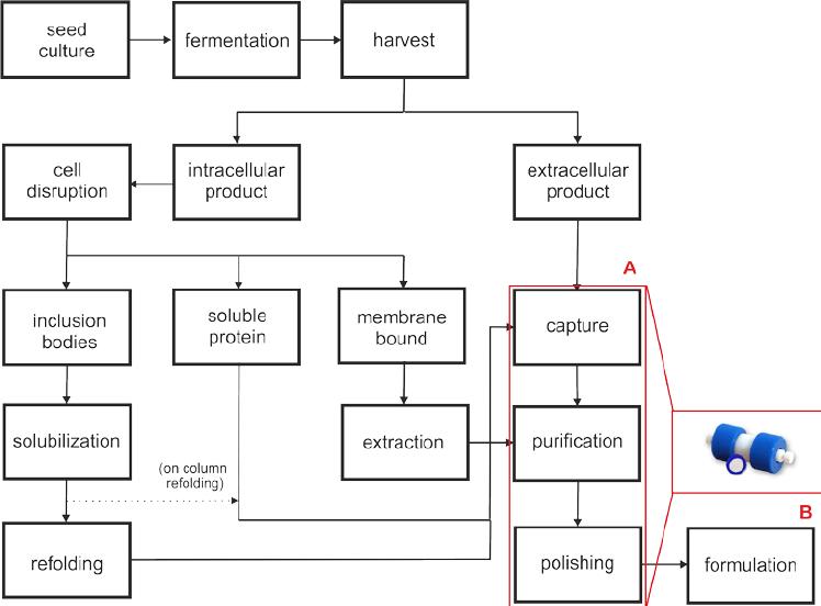 process flow diagram bioprocess