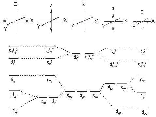 raypak 1529 wiring diagram