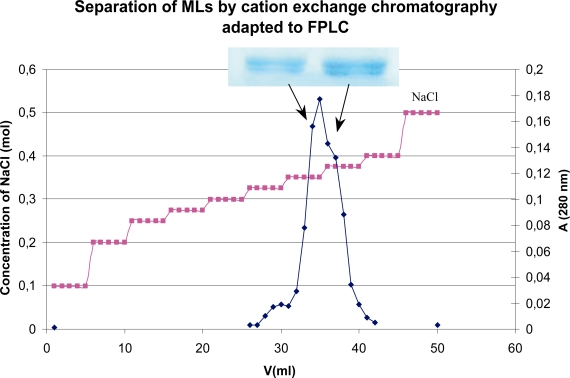 Separation of MLs by cation exchange chromatography adapted to FPLC - cation exchange chromatography