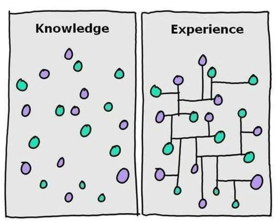What has more worth intelligence or experience?