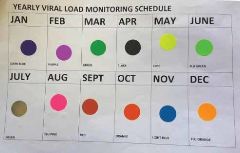 a) Monthly colour-coded VL sticker chart; (b) patient charts with