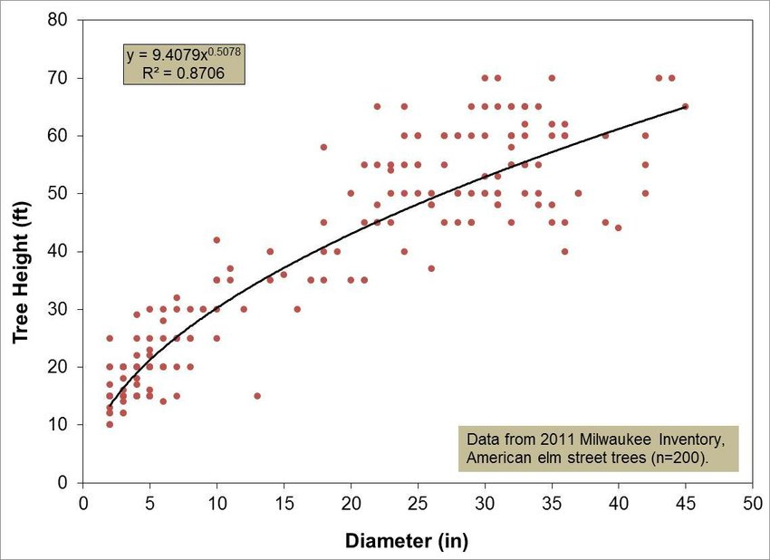 The relationship between stem diameter and tree height for American
