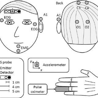 pulse oximeter diagram