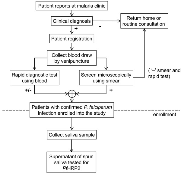 Enrollment of patients Flow chart showing the process for
