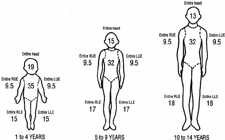 trauma body diagram