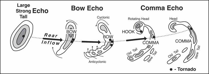 Echo Diagram Wiring Diagram