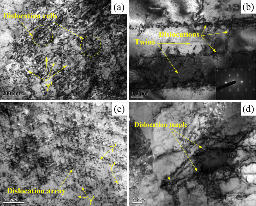 The TEM microstructure of the Ni-based superalloy GH202 treated by