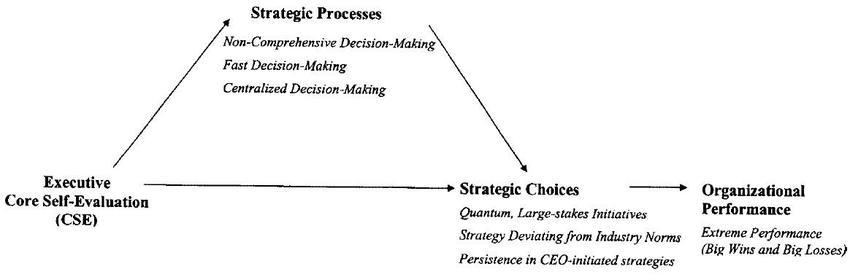 Effects of executive Core Self-Evaluation (CSE) on strategic