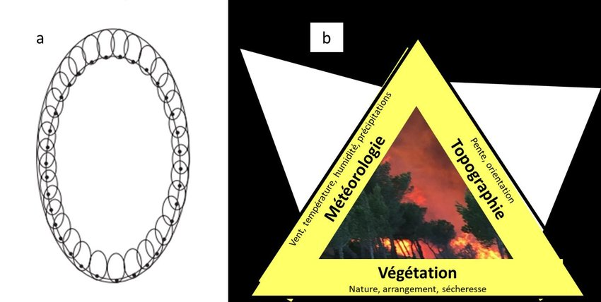 Usual description of wildfire propagation (a) According to Huygens