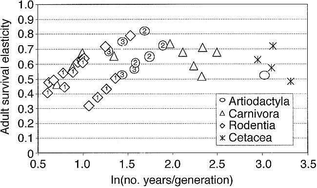 Adult survival elasticity vs generation time for three mammalian