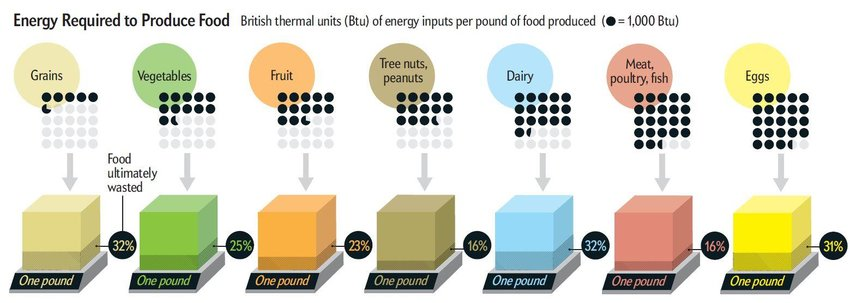 1 A diagram sighting the amount of organic food wasted each year