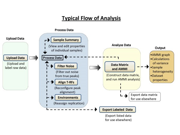 Typical flow of project analysis in T-REX Download Scientific Diagram - sample project analysis