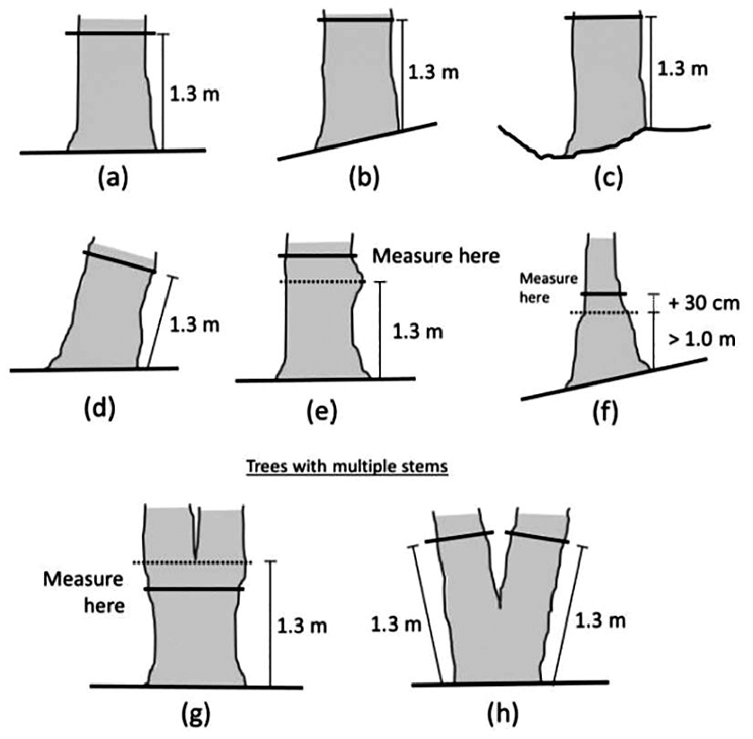 wood fence diagram