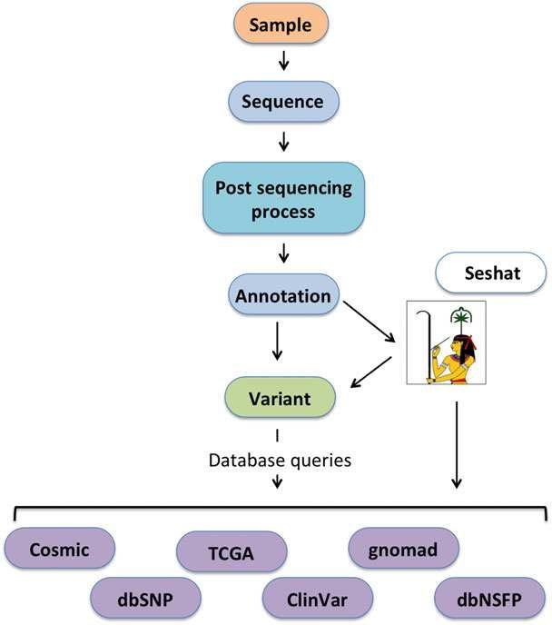 Typical NGS data analysis pipeline for cancer genome sequencing