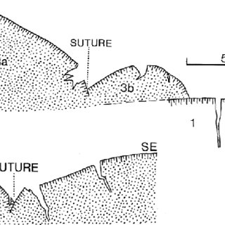 diagram of lava flow in hawaii