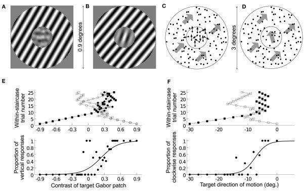 Stimulus design, task, and raw data analysis (A\u2013D) Example stimuli