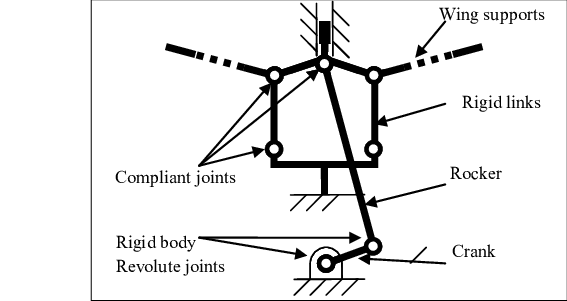 wing body diagram with a body diagram shown