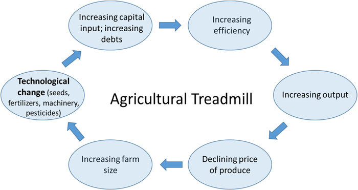 Graphic representation of the Agricultural Treadmill based on the
