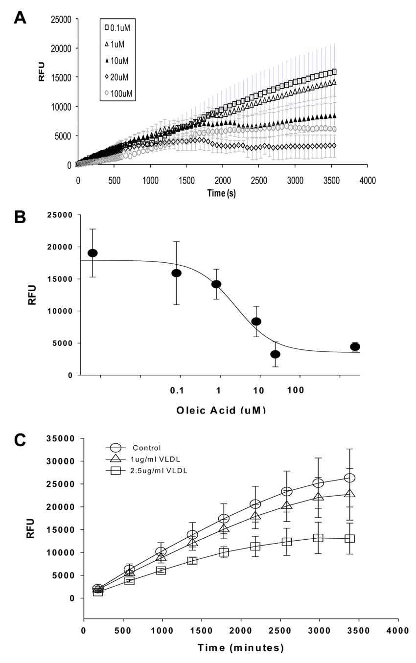 fatty acid diagram labeled