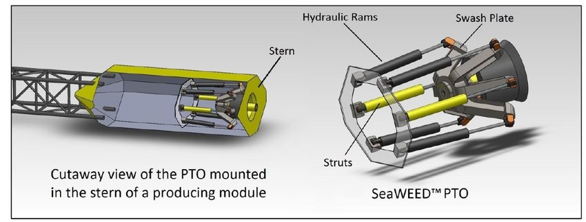 SeaWEED PTO system Download Scientific Diagram