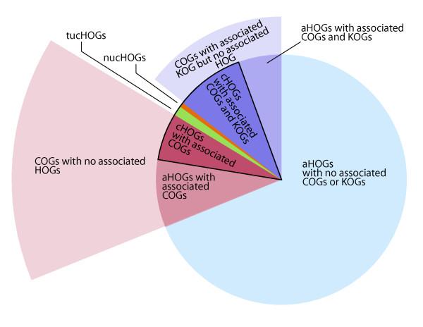 Venn diagram showing the distribution and relationship among