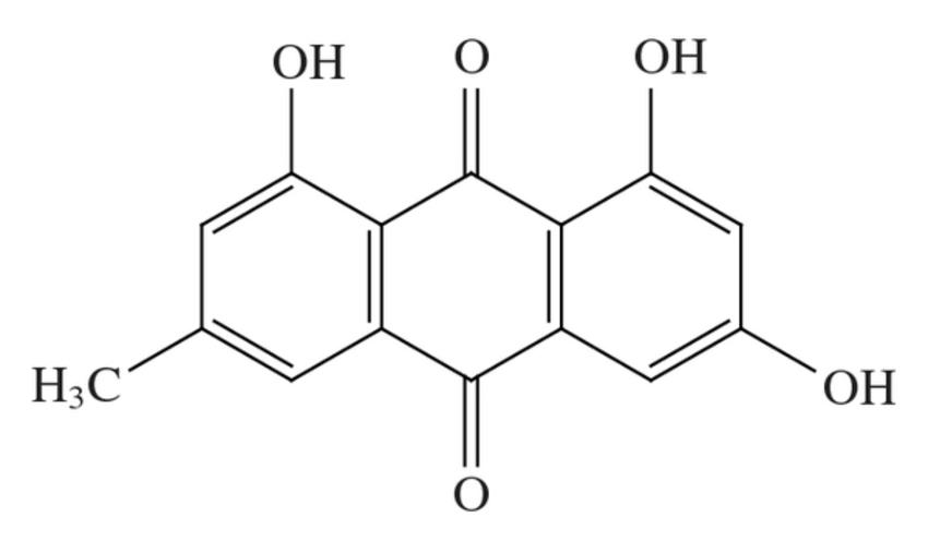 myoglobin structure and diagram