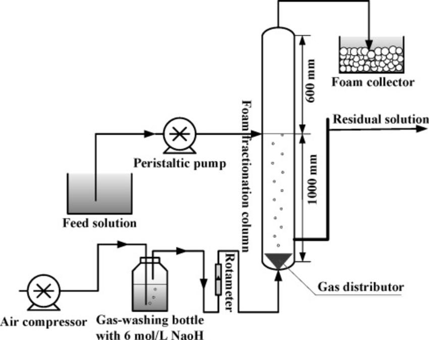 diagram of pepsin