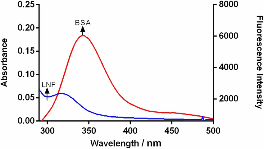 Fluorescence emission spectrum of BSA and UV-visible absorption