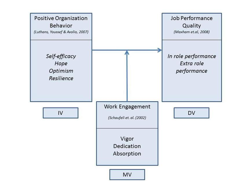 Conceptual Framework Accentuating the Positive Organizational