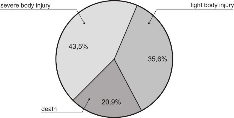 Percentage share of the types of accidents in relation to their