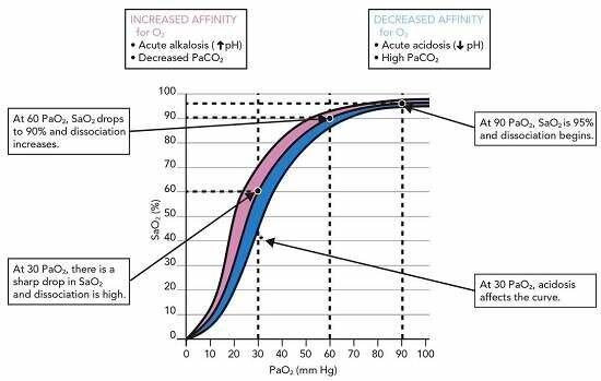 Oxyhemoglobin dissociation curve (Frankel LR , 2007) 18