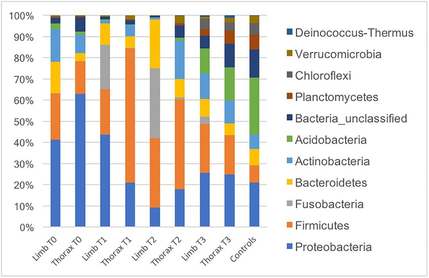 Relative abundances of main bacterial genera found at different body