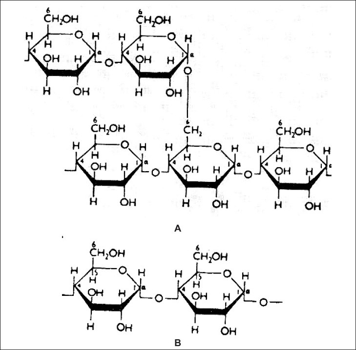 diagram of an enzyme controlled reaction