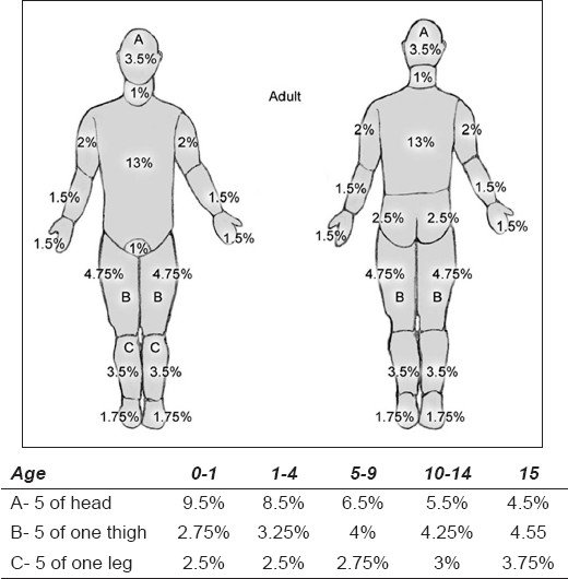 Lund and Browder chart (with age appropriate measurements of BSA