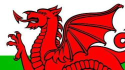 Portion of the Welsh Flag