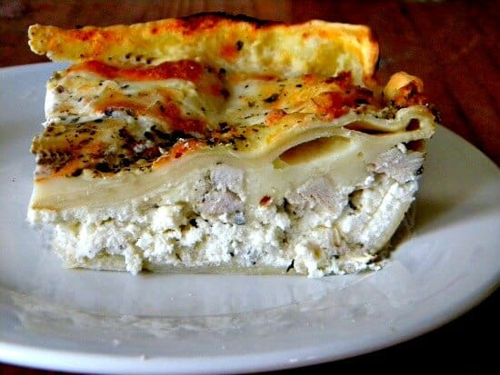 homemade pasta dough chicken alfredo lasagna