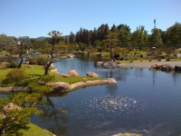 The Japanese Garden - Restless Curiosity