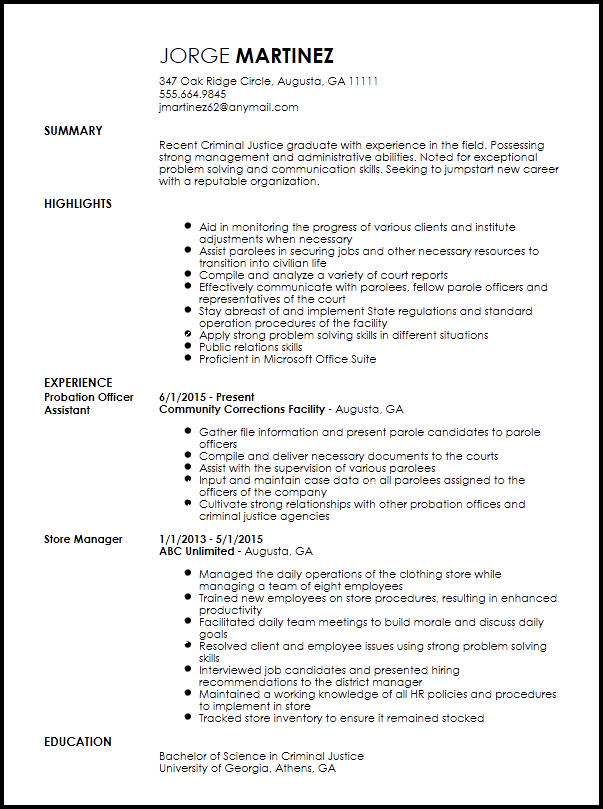 resume summary examples entry level it