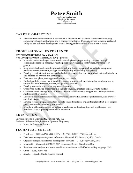 resume headline examples for java developer