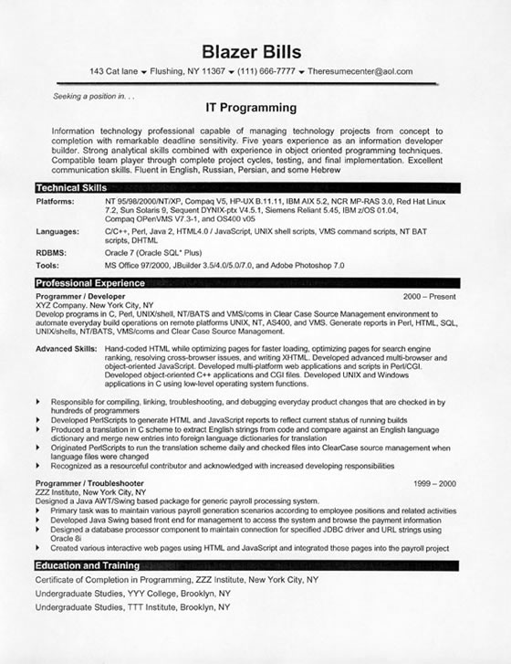 example of a programmers resume