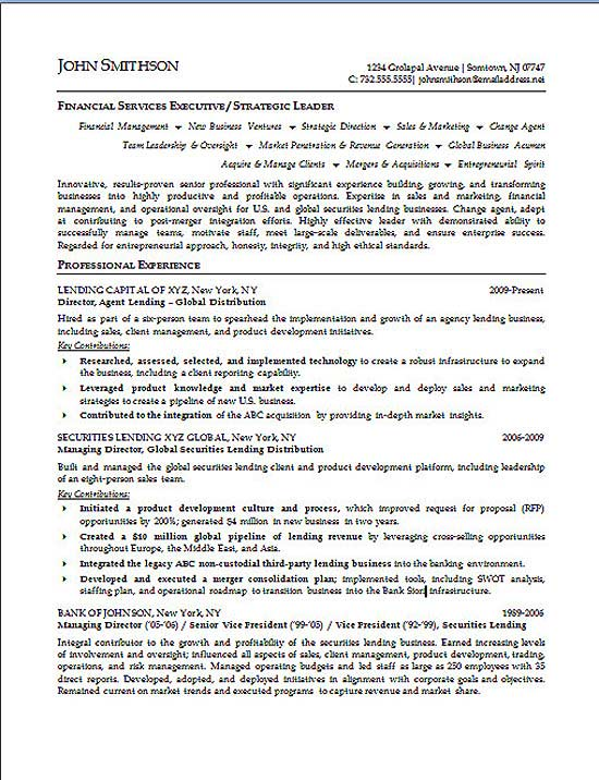 Executive Summary Example Resume Professional Resume Summary - executive resume formats and examples
