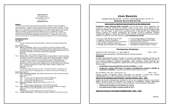 Sales Executive Resume Example - executive resume formats and examples