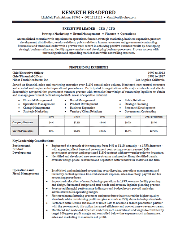sample ceo resume summary